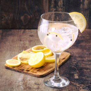 Tipsy Mule – Gin & Fizz Bar